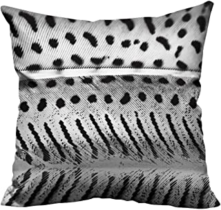YouXianHome Home DecorCushion Covers Guinea Hen Feather with Light Grey Background Comfortable and Breathable(Double-Sided Printing) 35x35 inch