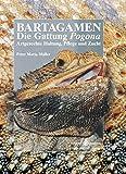 Bartagamen - Die Gattung Pogona: Artgerechte Haltung, Pflege und Zucht (Terrarien-Bibliothek) (German Edition)
