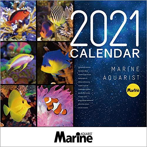マリンアクアリスト 海水魚カレンダー 2021年 ([カレンダー])の詳細を見る