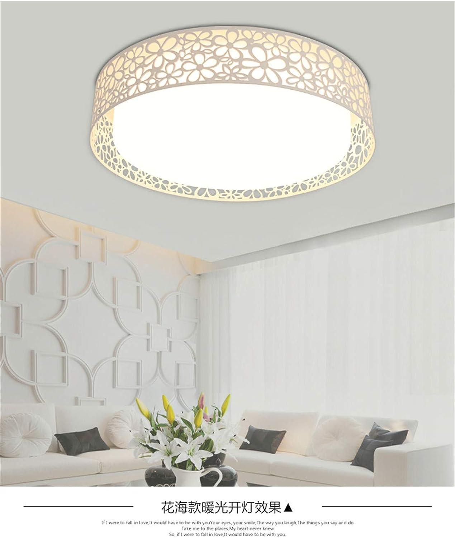 LED Deckenlampe Wohnzimmer Arbeitszimmer Gang Küche Beleuchtung Lampe Romantik Schlafzimmer Lampe Restaurant Lampe 50cm