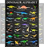 Dinosaur Alphabet Chart, A to Z Dinosaur Names - Laminated 14x19.5 - Educational Charts, Classroom Posters and Decorations, Back to School Supplies, Learning Posters for Preschool and Kindergarten