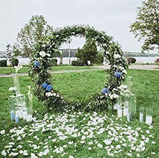 Baocicco 10x10ft Round Wedding Arch Photo Backdrop Floral Olive Branches Decorations Green Grass Lawn Petals Photography Background Outdoor Wedding Ceremony Lover Portrait Props