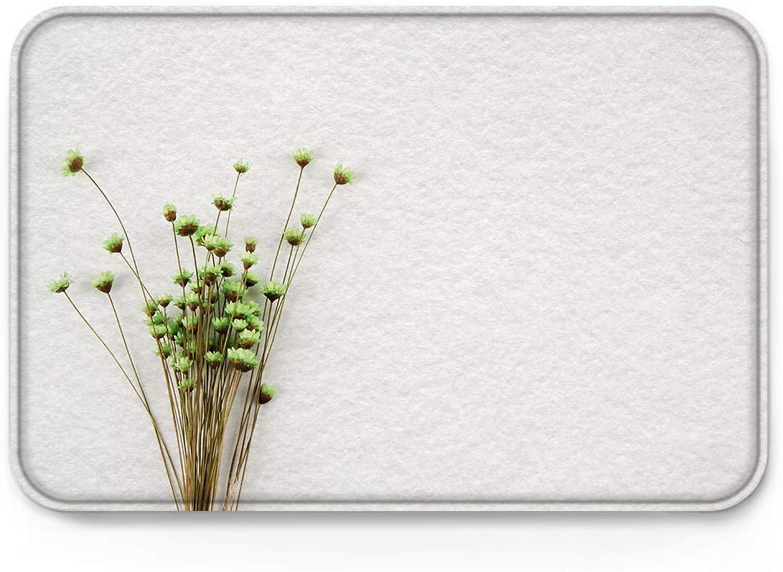 Brawvy Indoor Non Slip Welcome Doormat - Green Chrysanthemum -Non Slip Door Floor Mats Home Decor -Size 2031.5