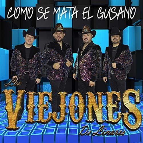 Los Viejones de Linares