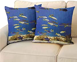 QIAOQIAOLO Pack of 2 Sofa Hug Pillowcase Ocean Decor Collection Double-Sided Printing 24x24 inch Clear Underwater Sea World with Marine Plants and Tropical Fish School Image Navy Blue Ivory Yellow