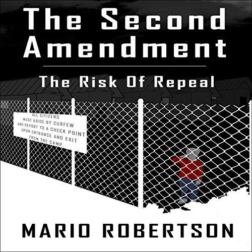 The Second Ammendment audiobook cover art