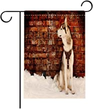 BEICIHOME Double Sided Flag Garden Flag Holiday Decoration Alaskan Malamute Domestic Pet Grungy Brick Wall and Snow Pedigree Animal Friend Garden Flags Perfect for Party Yard, Patio, Porch or Veranda