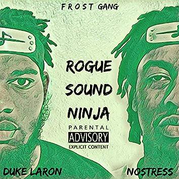 Rogue Sound Ninja