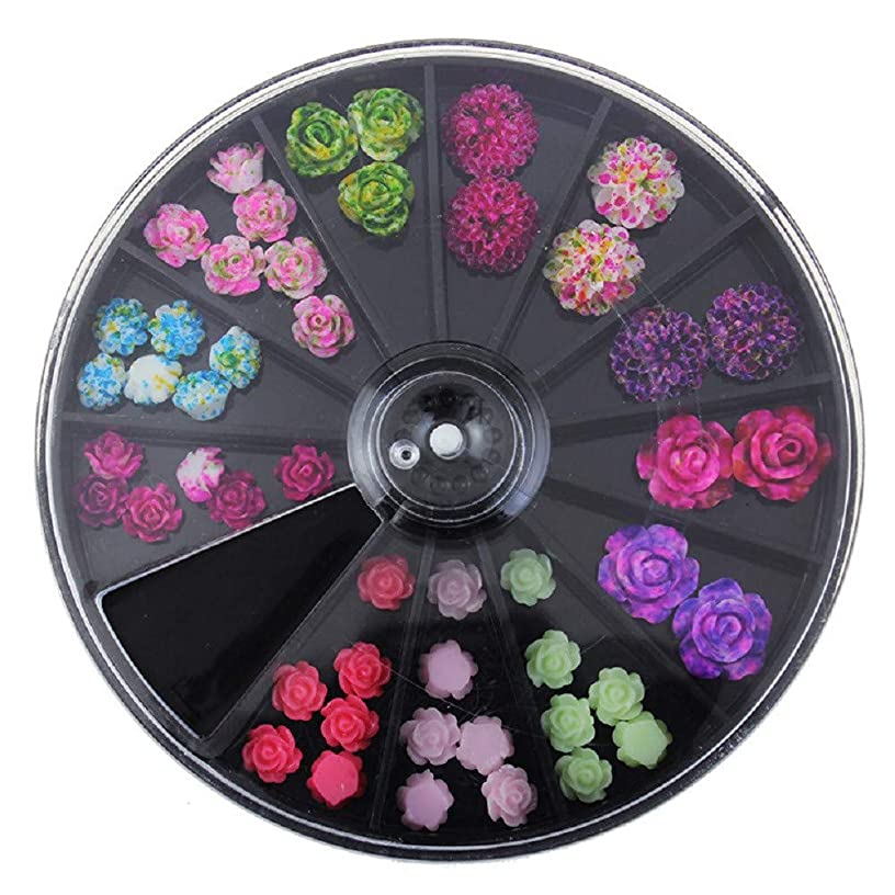 Maikouhai 1 Box Wheel of Nail Art Decoration, 3D Rose Flower Nail Art Charm Beads Colorful Resin Nail Tips Manicure Wheel - Diameter 6cm Height 1cm