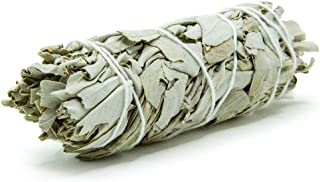 GloFX White Sage Bundle - 1 Pack - 4 Inches Wild Harvested California Smudge Stick Wand for Spiritual Incense Burning Aromatherapy Energy Cleansing Healing and Meditation