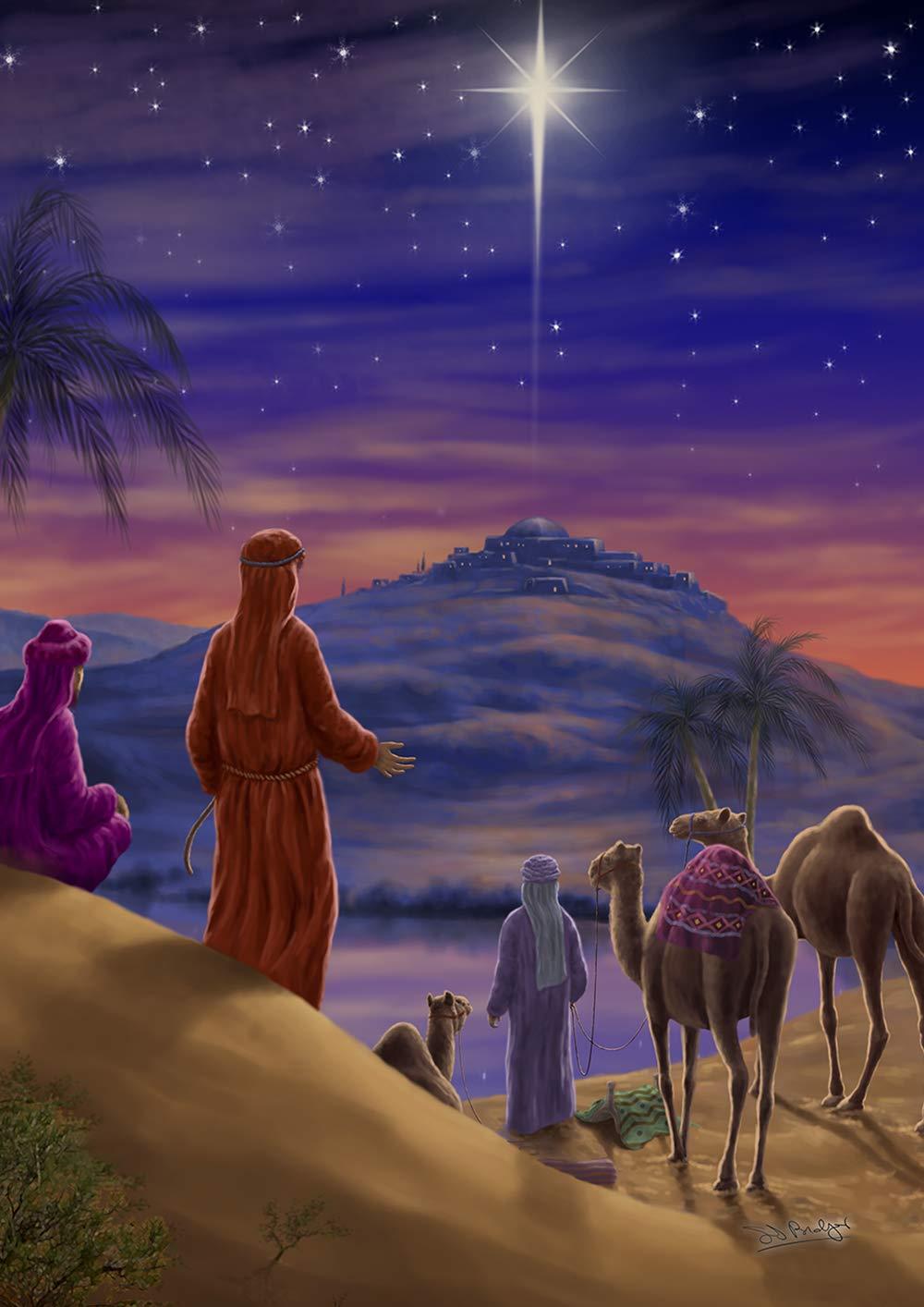 Toland Home Garden 1112271 Star Of Bethlehem Garden Flag 12 5 X 18 Inch Winter Christmas Nativity Multi Buy Online At Best Price In Uae Amazon Ae