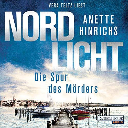 Nordlicht. Die Spur des Mörders Titelbild