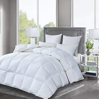Luxurious Goose Down Comforter Queen Size Duvet Insert All Seasons Solid White Hypo-allergenic 1000 Thread Count 750+ Fill Power 100% Cotton Shell Down Proof with Tabs (Queen, White)