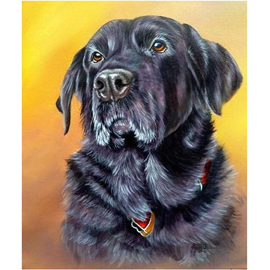 DIY 5D Diamond Painting by Number Kit,Animal Pattern Rhinestone Embroidery Cross Stitch Ornaments Arts Craft Canvas Wall Decor(Dog)