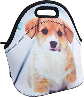 Best lunch box for 9 year old Reviews