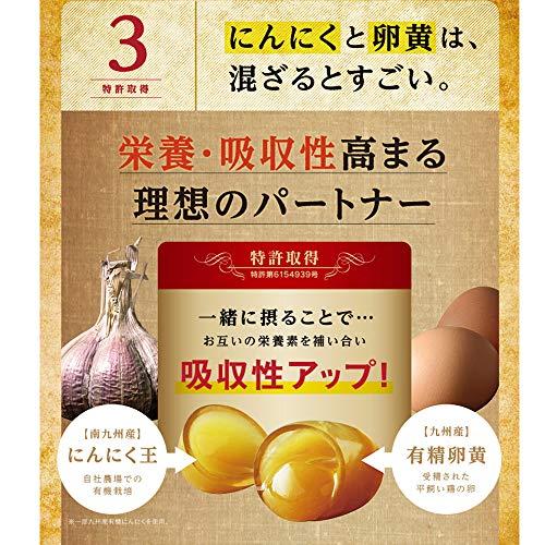 【健康家族】伝統にんにく卵黄極31粒入(1粒407mg×31粒入)にんにくパワーの源「GSAC(ジーサック)」を従来品の2倍配合DHAEPA