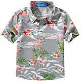 SSLR Big Boy's Flamingos Button Down Short Sleeve Aloha Hawaiian Shirt (X-Large (18-20), Light Grey)