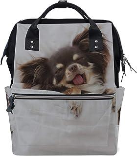Amazon.es: bolso perro chihuahua