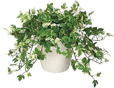 人工観葉植物 光触媒 249A45 アンペロシスアイビー М 約 幅40×奥行40×高さ28cm