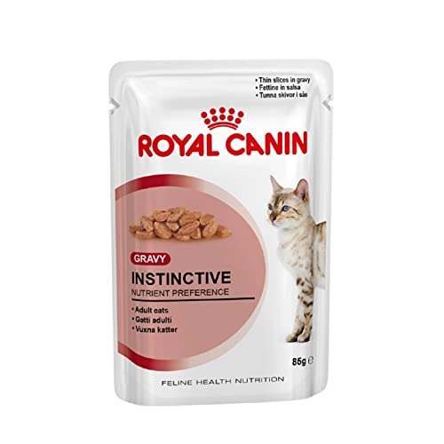 Royal Canin Cat Food Buy Royal Canin Cat Food Online At