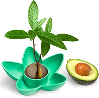 HENMI Avocado Planting Seed Germinator Bowl Avocado Tree Growing Kit Garden Gifts for Indoor Balcony Planting/Kitchen Garden Seed Starter Gift/Practical Gardening Gifts for Women