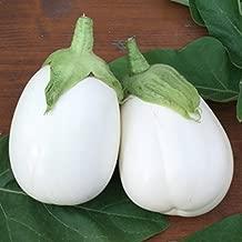 Nikitovka Eggplant Aubergine Paloma F1 50 Seeds Non GMO Open Pollinated Organically Grown for Garden Planting