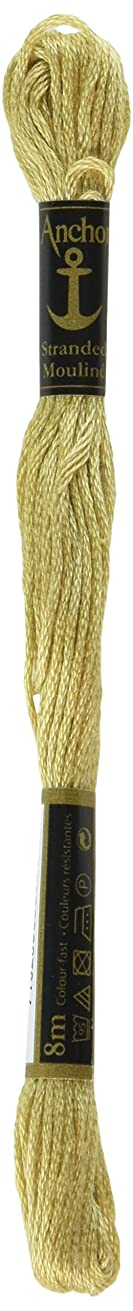 Anchor Six Strand Embroidery Floss 8.75 Yards-Sand Stone Medium Light 12 per box