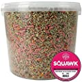 SQUAWK Premium Wild Bird Food | No Mess Garden Birds Feed Mix | Contains Berry Suet Pellets and Sunflower Hearts and Kibbled Peanuts | Enhanced Seed Mixture | High Energy Balanced Recipe (1L Tub) by SQUAWK