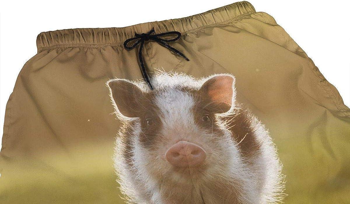 DASMUS Mini Pig at Sunset Men's Drawstring Beach Board Shorts Swim Trunks with Mesh Lining
