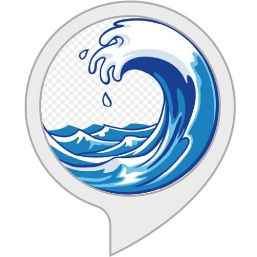 Previsão de Surfe RJ