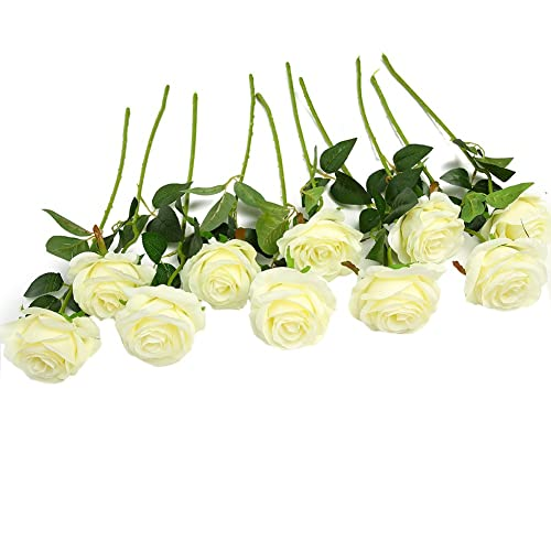 White Roses Amazon