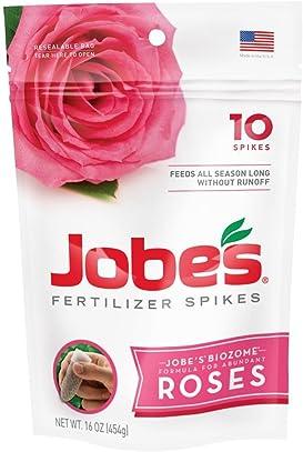 Explore fertilizer spikes for roses