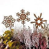 Terma Stahldesign Gartenstecker Sterne rost Sterne 30cm, fensterdeko Winter, edelrost deko Weihnachten Dekoration weihnachtsdeko Sterne zum hängen deko Stern Metall