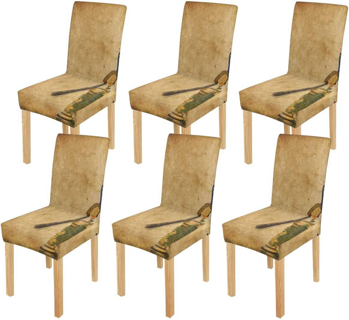 InterestPrint Peacock Grunge Background Chair Max High quality 72% OFF Dining Cover Seat