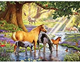 HJHJHJ Puzzles para Adultos Pieza de 2000, Rompecabezas de Agua Potable de Caballo de cartón 2000 Piezas para Adultos Amigos de la Familia 100x70cm