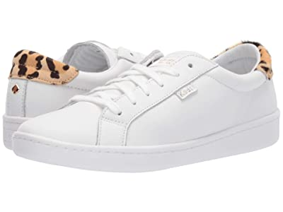 Keds x kate spade new york Ace (White/Leopard) Women
