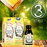 Immune Booster/Immune Support/Great for Cold Symptoms - Official Distributor - 3 Bottles of Apiario Silvestre Brazilian Green Bee Propolis Liquid Glycolic Extract-Non Alcoholic, Wax Free, Sugar Free