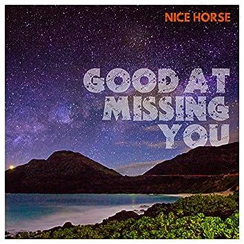 Good At Missing You
