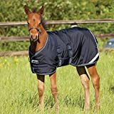 Horseware Ireland - Amigo Foal Turnout Blanket - Navy-Navy-39_3'3'