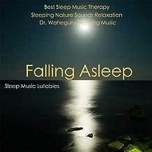 Falling Asleep: Best Sleep Music Therapy - Dr. Waheguru Sleeping Music & Sleeping Nature Sounds Relaxation