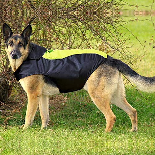 BSEEN Dog Raincoats Adjustable Lightweight Waterpoof Dog Rain Jacket with Reflective Strip Gear & Harness Hole for Small Medium Large Dogs (XXL, Green)