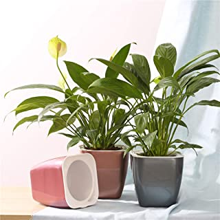 FENGZHITAO Self Watering Planter, African Violet Pots,Lazy Flower Pot,Automatic-Watering Planter Flower Pot for Succulents, Herb, African Violets, All House Plants(3 Packs Colourful Small)
