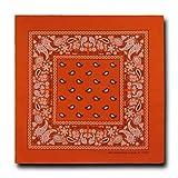 Kaiser Collection Double Sided Paisley Bandanas (1 Dozen), Orange