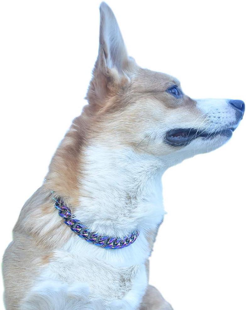 Dalei Collar De Estrangulación Para Entrenamiento De Perros De Cadena Pesada Collar De Cadena De Metal Ajustable Collar De Acero Inoxidable 20inch Amazon Es Hogar