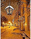 CHOUJJ Painting by Numbers Art Wall Art Snow Night Street Light Anniversary Wedding New Accommodation Christmas Decor Gift Decorations-40x50cm