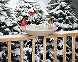 EZ Tilt-To-Clean Heated Bird Bath, Deck-Mounted