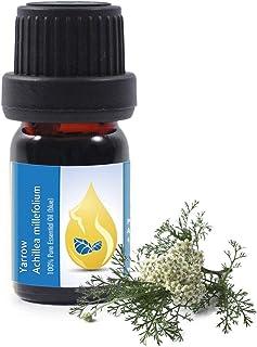 Rölleka (Achillea millefolium) 100% naturlig ren eterisk olja (10 ml), toppkvalitet från den egna familjeföretaget, terape...