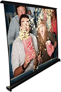 Portable Projector Screen - Mobile Projection Screen Stand, Lightweight Carry & Durable Easy Pull Out System for Schools Meeting Conference Indoor Outdoor Use, 40 Inch By Pyle (PRJTP46)