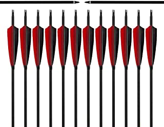 Image of Carbon Arrow Hunting Arrows with 100 Grain Removable Tips for Archery Compound & Recurve & Traditional Bow Practice Shooting (Pack of 12)