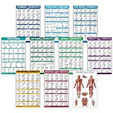 10 Pack - Exercise Workout Poster Set - Dumbbell, Suspension, Kettlebell, Resistance Bands,...